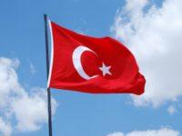 Турция выиграла дело в ВТО против США
