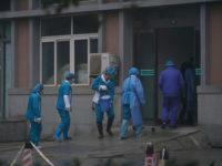 Власти исключили угрозу ситуации с коронавирусом для экономики России